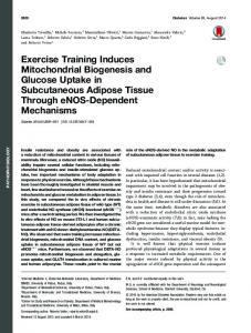 Exercise Training Induces Mitochondrial Biogenesis and ... - Diabetes