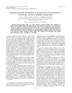 Exopolysaccharide Production Is Required for Development of ...