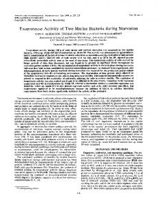 Exoprotease Activity of Two Marine Bacteriaduring Starvation
