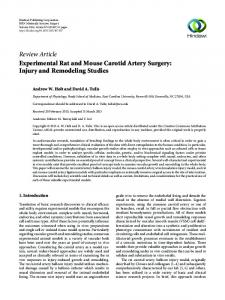 Experimental Rat and Mouse Carotid Artery Surgery: Injury and ...