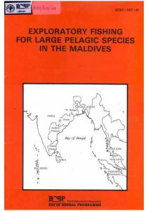 Exploratory Fishing for Large Pelagic Species in the Maldives - BOBP ...