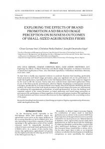 exploring the effects of brand promotion and brand image perception ...