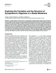 Exploring the Formation and the Structure of ... - Cell Press