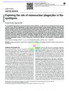 Exploring the role of mononuclear phagocytes in the