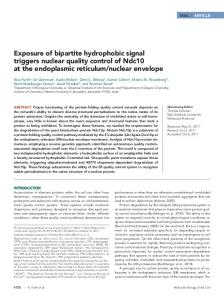 Exposure of bipartite hydrophobic signal triggers ... - BioMedSearch