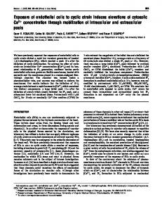 Exposure of endothelial cells to cyclic strain induces ... - Europe PMC