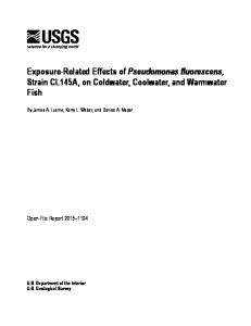 Exposure-Related Effects of Pseudomonas fluorescens, Strain ...