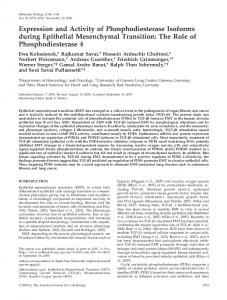 Expression and Activity of Phosphodiesterase Isoforms during ...
