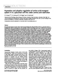 Expression and adaptive regulation of amino acid transport system A ...