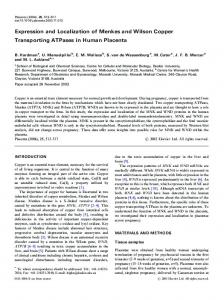 Expression and Localization of Menkes and Wilson Copper ... - Placenta