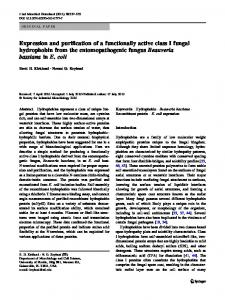 Expression and purification of a functionally active class I fungal ...