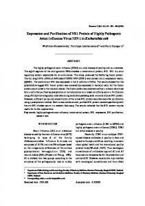 Expression and Purification of NS1 Protein of Highly ... - ThaiScience