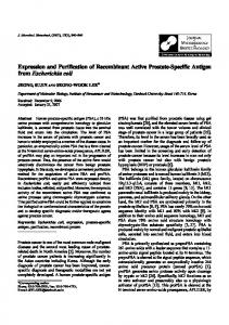 Expression and Purification of Recombinant Active Prostate-Specific ...