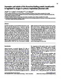 Expression and uptake of the thyroxine-binding protein transthyretin is ...