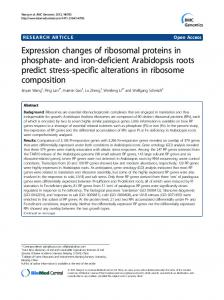Expression changes of ribosomal proteins in phosphate-and iron