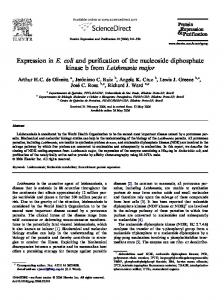 Expression in E. coli and purification of the nucleoside diphosphate ...