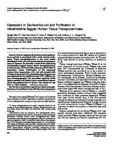 Expression in Escherichia coli and Purification of Hexahistidine ...