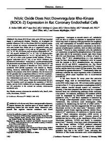 Expression in Rat Coronary Endothelial Cells
