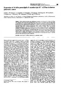 Expression of 16kDa proteolipid of vacuolar-type H+ ... - BioMedSearch