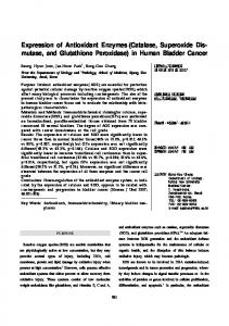 Expression of Antioxidant Enzymes (Catalase, Superoxide Dis