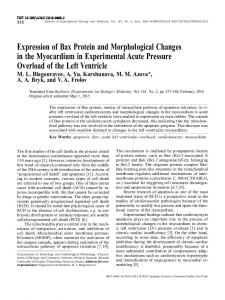 Expression of Bax Protein and Morphological Changes in the ...