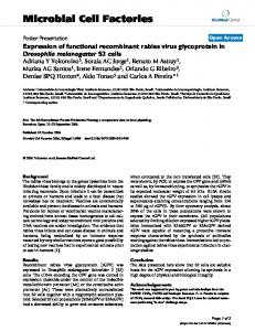 Expression of functional recombinant rabies virus glycoprotein in ...