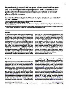 Expression of glucocorticoid receptor, mineralocorticoid receptor, and ...