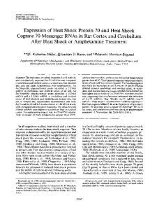 Expression of Heat Shock Protein 70 and Heat Shock Cognate 70 ...