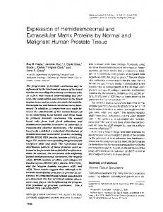 Expression of hemidesmosomal and extracellular matrix proteins by ...