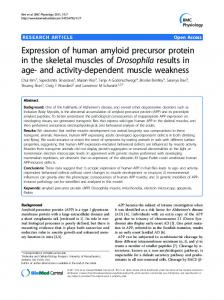 Expression of human amyloid precursor protein in the skeletal ...