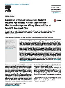 Expression of Human Complement Factor H Prevents Age-Related ...