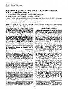 Expression of muscarinic acetylcholine and dopamine receptor ...