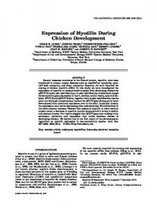 Expression of Myotilin During Chicken ... - Wiley Online Library