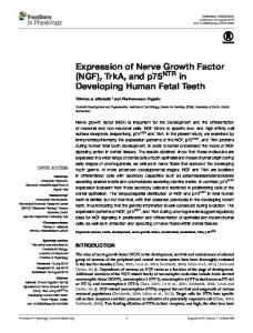 Expression of Nerve Growth Factor (NGF), TrkA, and ... - Frontiers