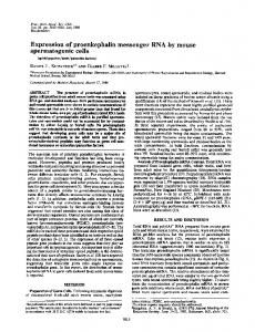 Expression of proenkephalin messenger RNA by mouse ...