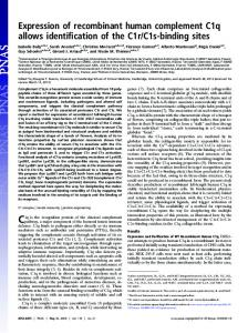 Expression of recombinant human complement C1q allows ... - PNAS