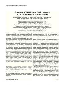 Expression of S100 Protein Family Members in the Pathogenesis of ...