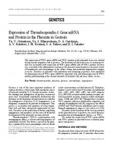 Expression of Thrombospondin-1 Gene mRNA and Protein in the ...