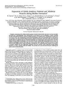 Expression of Xylella fastidiosa Fimbrial and Afimbrial Proteins during ...