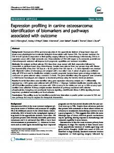 Expression profiling in canine osteosarcoma: identification of ...