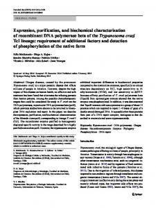 Expression, purification, and biochemical characterization of ...