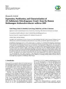 Expression, Purification, and Characterization of (R)-Sulfolactate ...