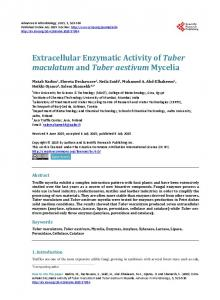 Extracellular Enzymatic Activity of Tuber maculatum and Tuber ...