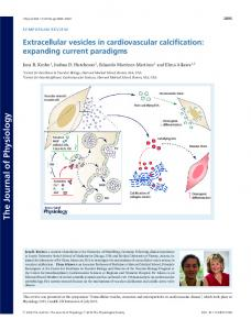 Extracellular vesicles in cardiovascular ... - Wiley Online Library