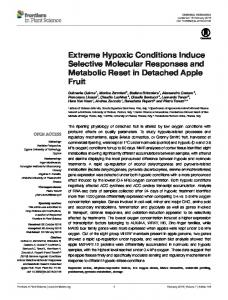 Extreme Hypoxic Conditions Induce Selective Molecular Responses ...