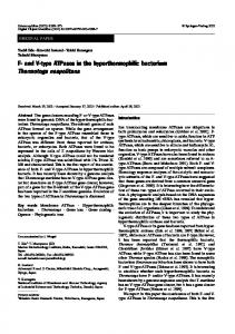 F- and V-type ATPases in the hyperthermophilic ... - Springer Link
