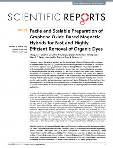 Facile and Scalable Preparation of Graphene Oxide-Based Magnetic