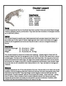 Fact Sheet - Clouded Leopard Project