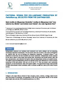 FACTORIAL DESIGN FOR COLLAGENASE PRODUCTION BY