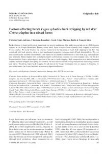 Factors affecting beech Fagus sylvatica bark stripping by red ... - MabLab